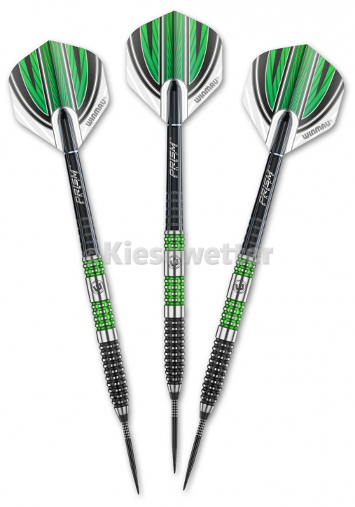 Steel Dart-Set Special Edition Barrel 24 g Daryl Gurney (Artnr. 23216)