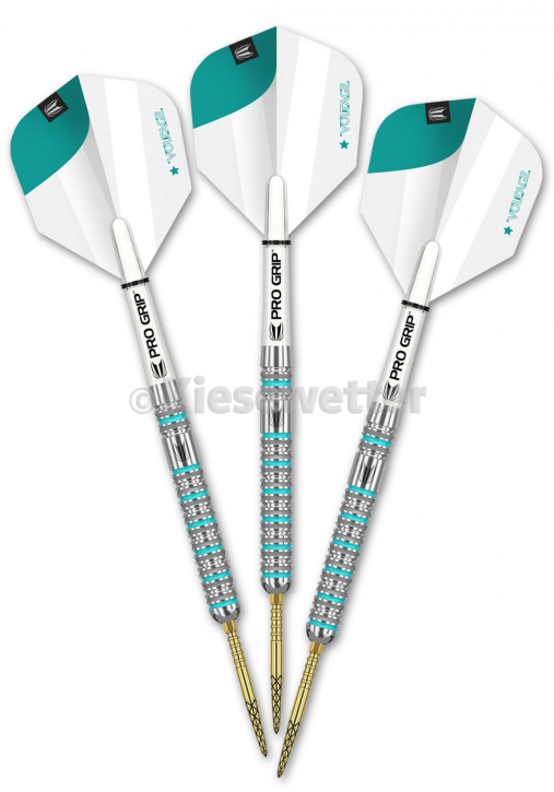 Steel Dart-Set Gen2 Barrel 23 g Rob Cross